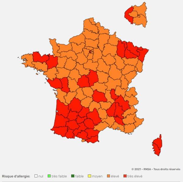 CARTE DES POLLENS FRANCE juin 2021