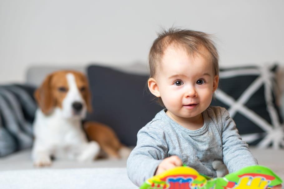 Le bébé de 13 mois