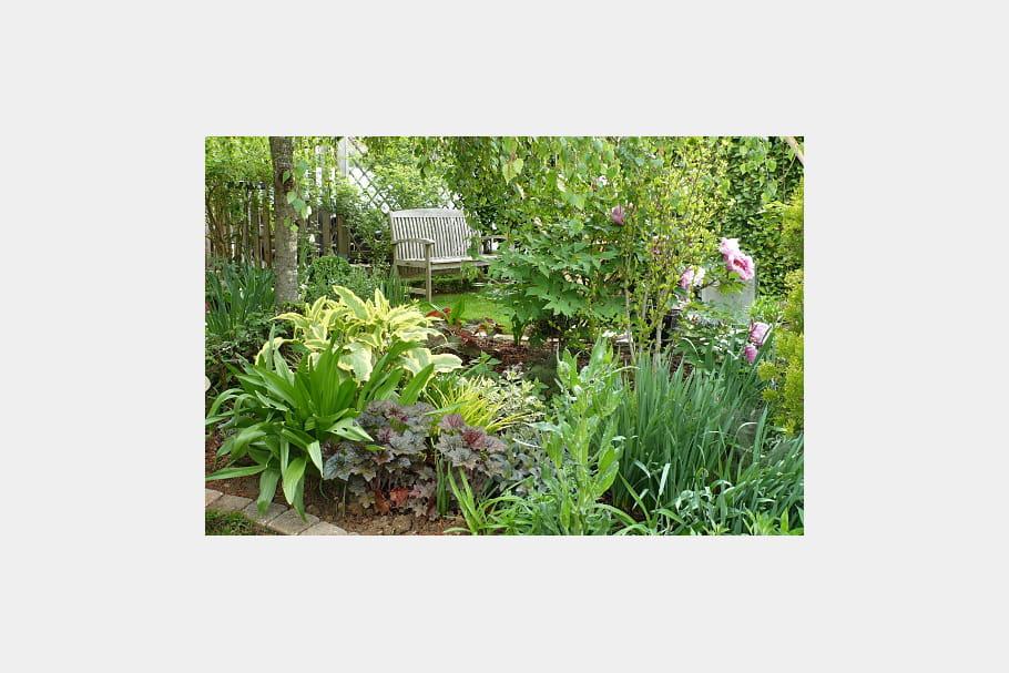 Magnifique cama eu de vert en attendant l 39 arriv e des fleurs le jardin des grandes vignes d - Le jardin des grandes vignes ...