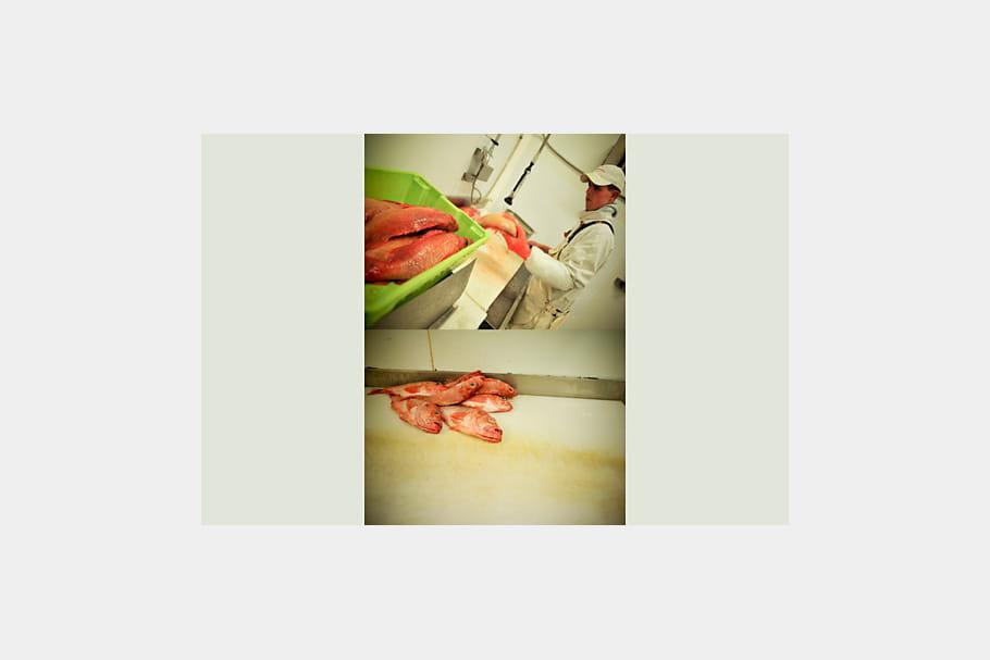 Fileteur de Rouget par Florent Dupuy