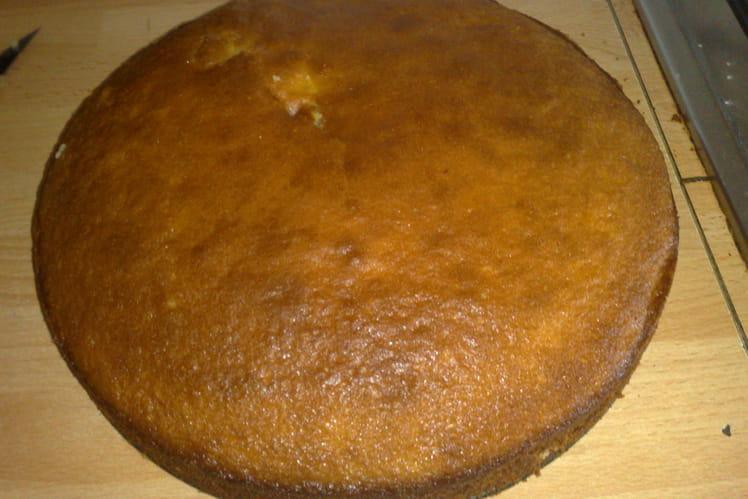 Gâteau au yaourt saveur coco-ananas