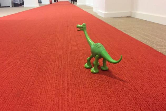 Arlo s'entraîne à fouler le tapis rouge