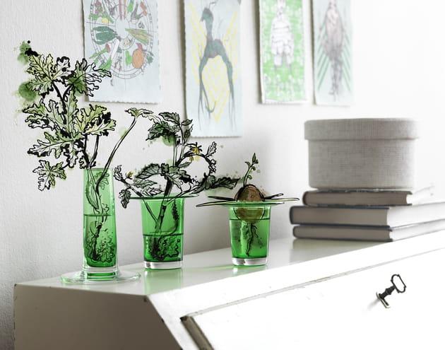 Vases pour boutures Användbar d'IKEA