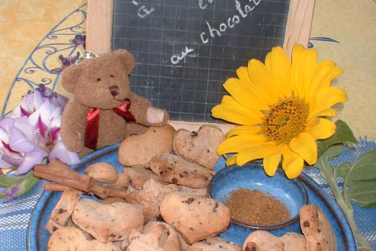 Biscuits à la cannelle et aux pépites de chocolat