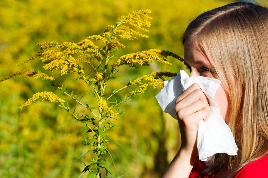 Pollens : attention aux allergies printanières !
