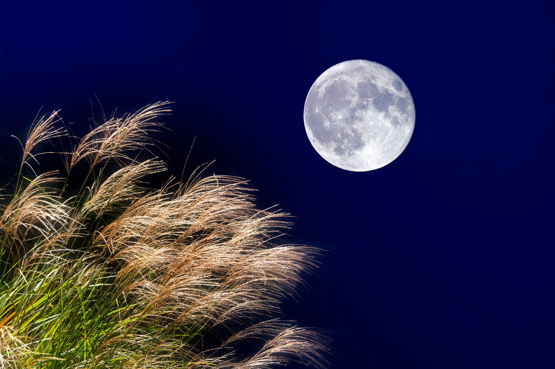 Pleine lune 21septembre: une pleine lune sous le signe du Poissons
