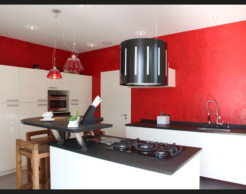 Pleins feux sur la cuisine rouge en 15photos