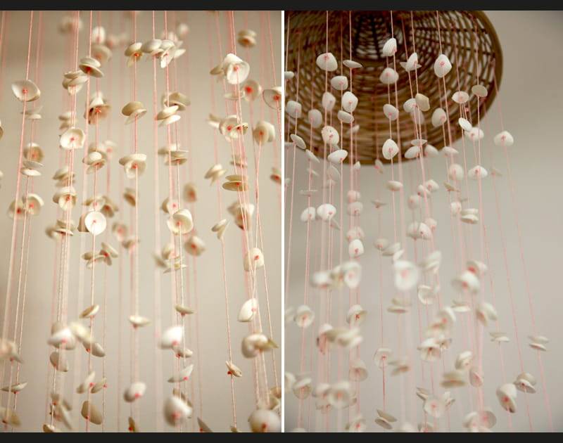Pluie de coquillages