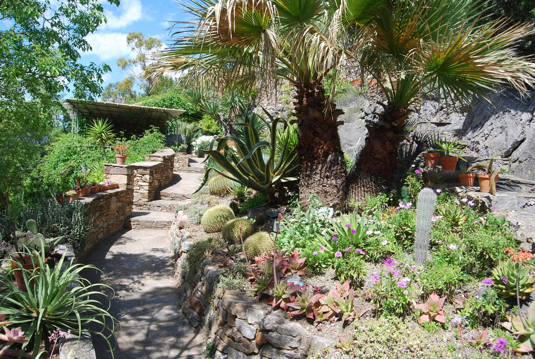 jardin-mediterraneen-roquebrun