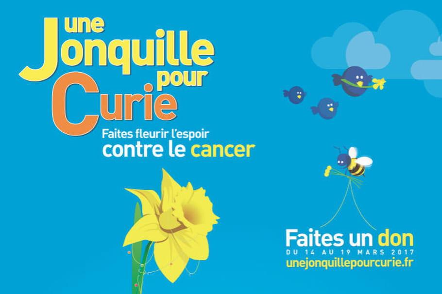 Une jonquille pour Curie, la fleur de la bonne cause