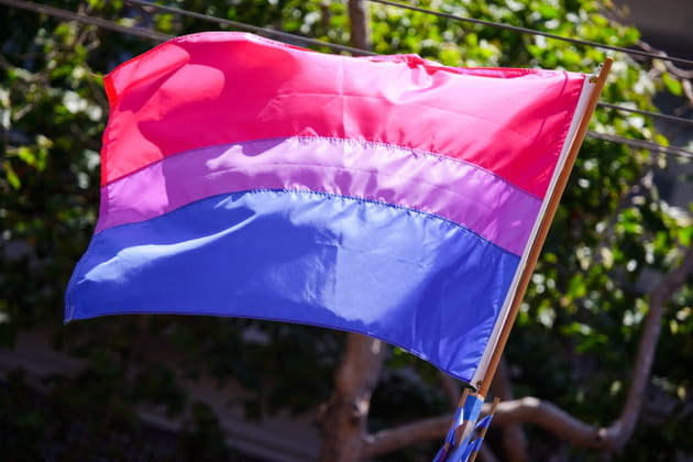 drapeau bisexuel wikimedia commons anastasiarasputin