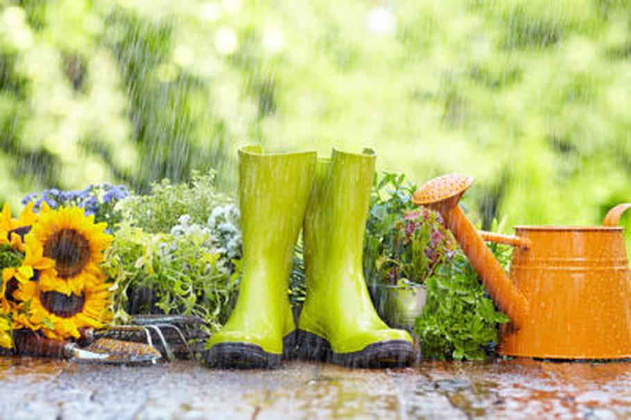 Les Français, de mauvais jardiniers ?