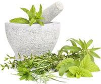 hahnemman a eu en 1796 l'idée d'utiliser, pour soigner une maladie, des plantes