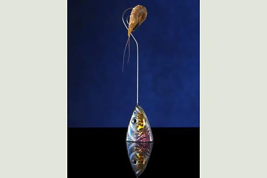 Crevette bleue