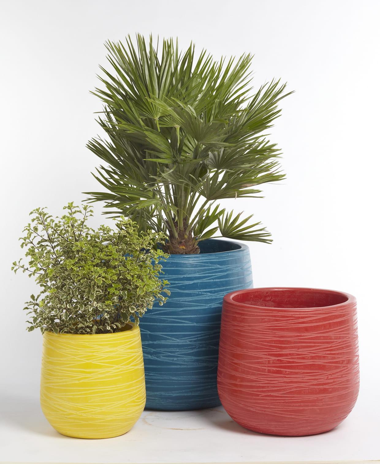 pots color s par magasins u. Black Bedroom Furniture Sets. Home Design Ideas
