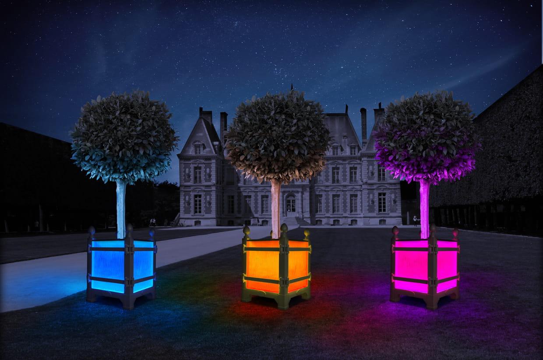 Caisse oranger lumineuse alcine par les jardins du roi for O jardin ideal route de montauban bessieres
