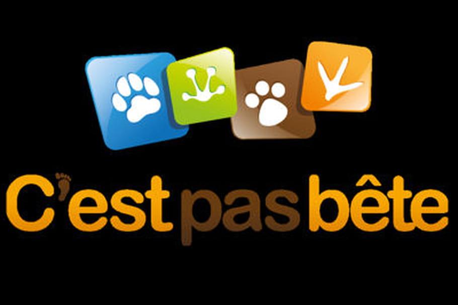 Cpasbête.com: au paradis du shopping animalier
