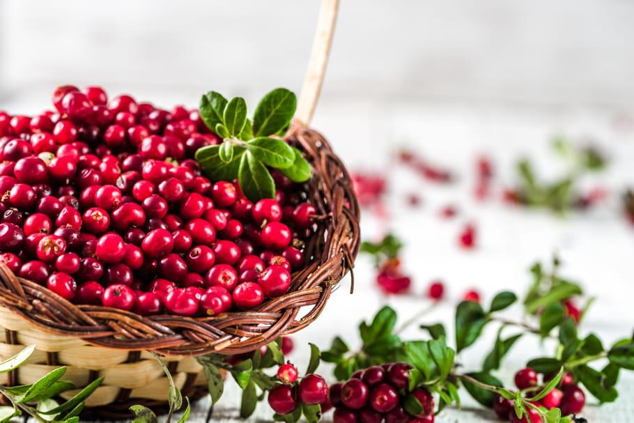 Cranberry (Canneberge)