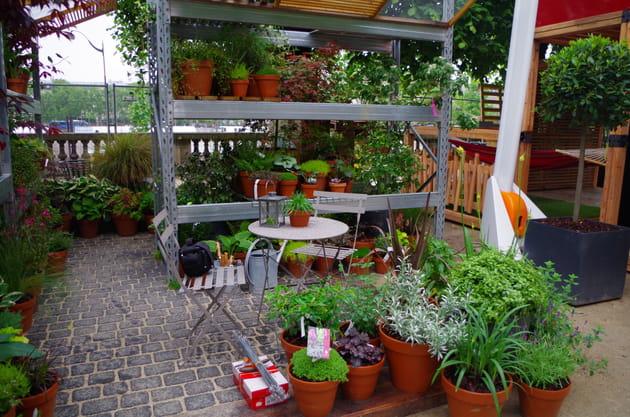Un jardin de cour d'immeuble