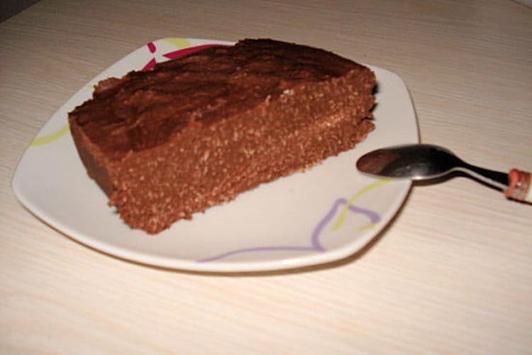 Terrine glacée chocolat-noix de coco