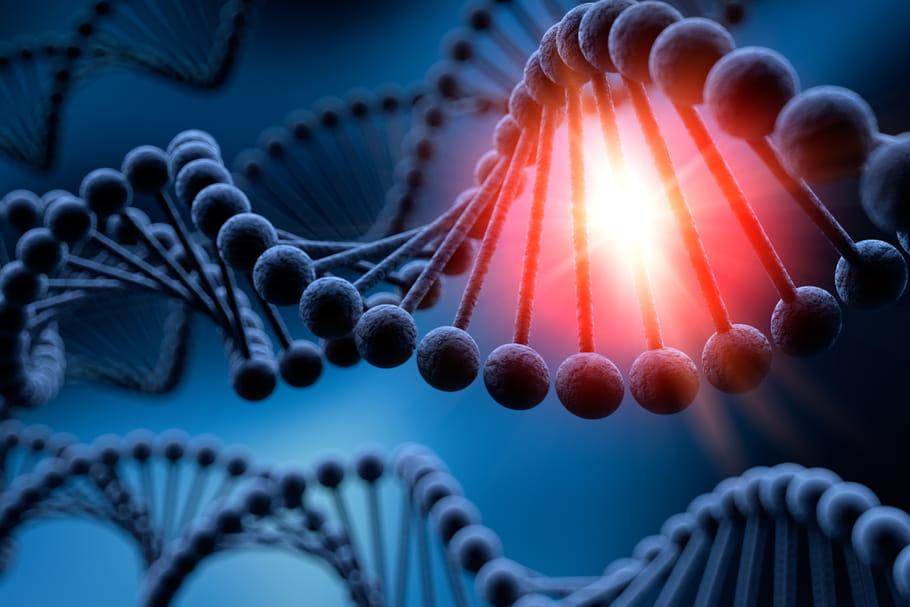 La manipulation d'ADN sur des embryons humains a commencé