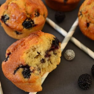 muffins aux mûres sauvages