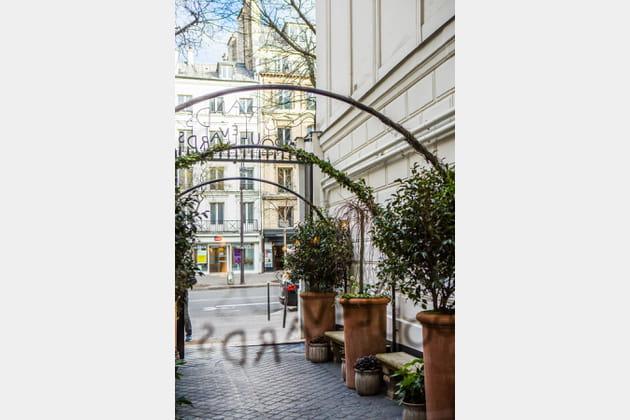 Le charme d'une allée arborée en plein Paris