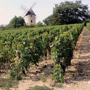 moulin de santenay, bourgogne
