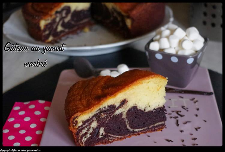 recette de gâteau au yaourt marbré : la recette facile