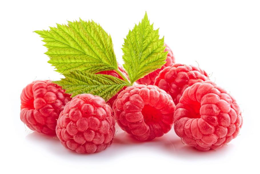 FRAMBOISE : tout savoir sur ce délicieux fruit rouge, comment choisir vos  framboises, les cuisiner, les conserver...