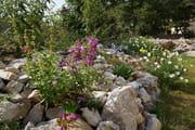 Comment Amenager Un Jardin Sec