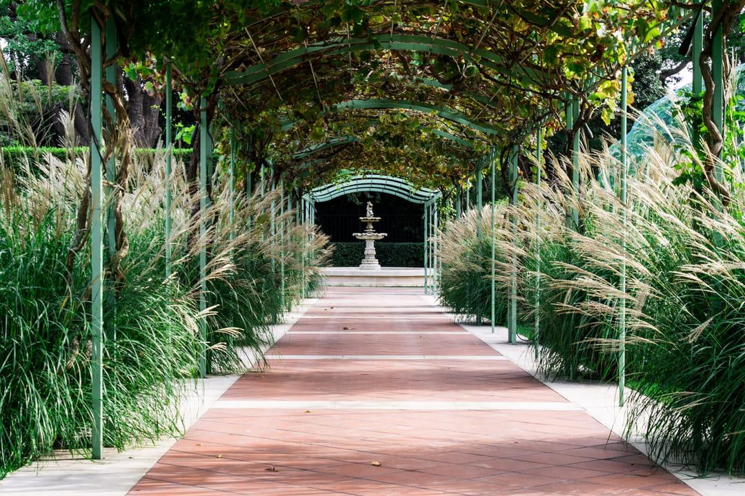 jardin-en-longueur-avec-terrasse