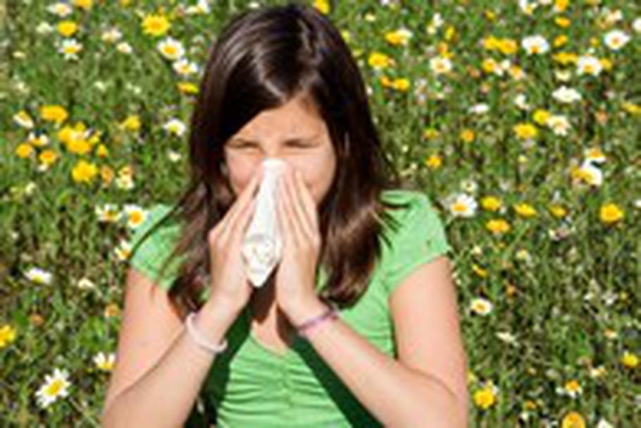 Les pollens de graminées débarquent !