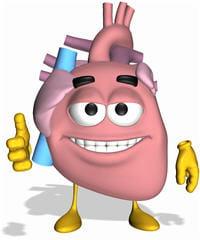 le cœur est particulièrement sensible aux infections.