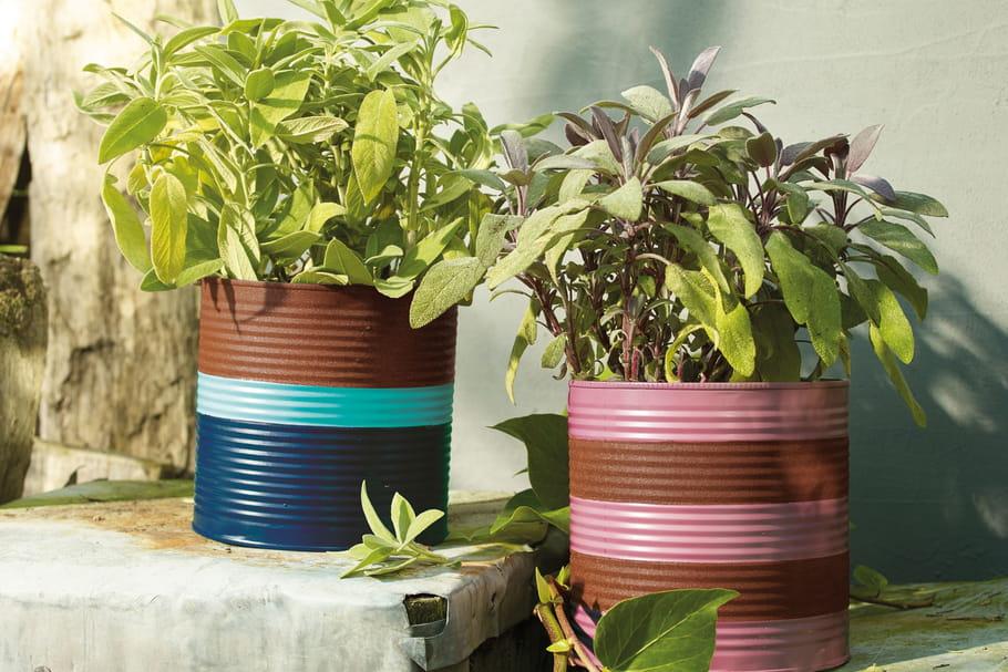 DIY: quand une boîte de conserve devient un joli cache-pot
