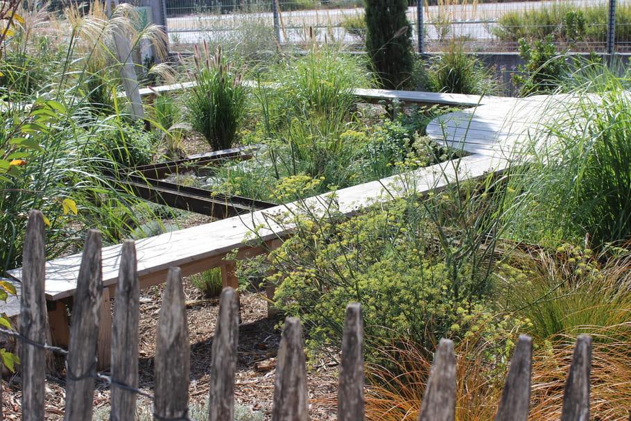 Aménager un jardin sauvage et poétique