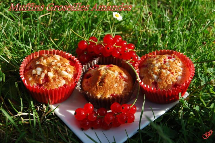 Muffins groseilles amandes
