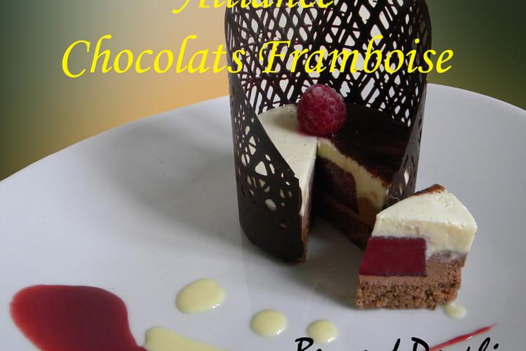Entremet aux chocolats, coeur de framboise
