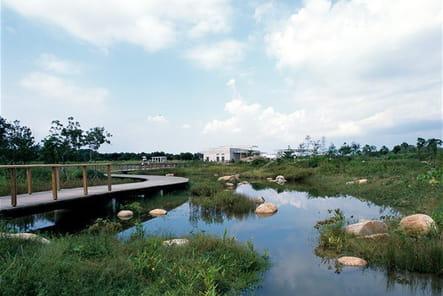 Wetland Park, l'écrin de verdure