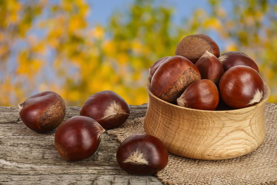 Coloriage Marron Fruit.Marron Chataigne Quelles Differences Lequel Se Mange Ou
