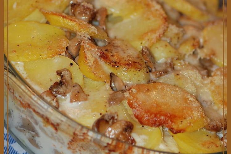 Recette de Gratin de pommes de terre & champignons