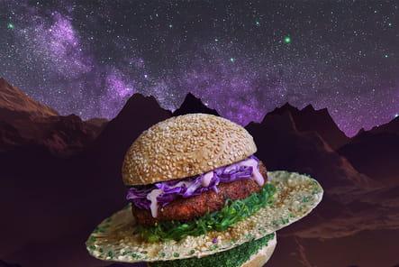 Ovni Burger