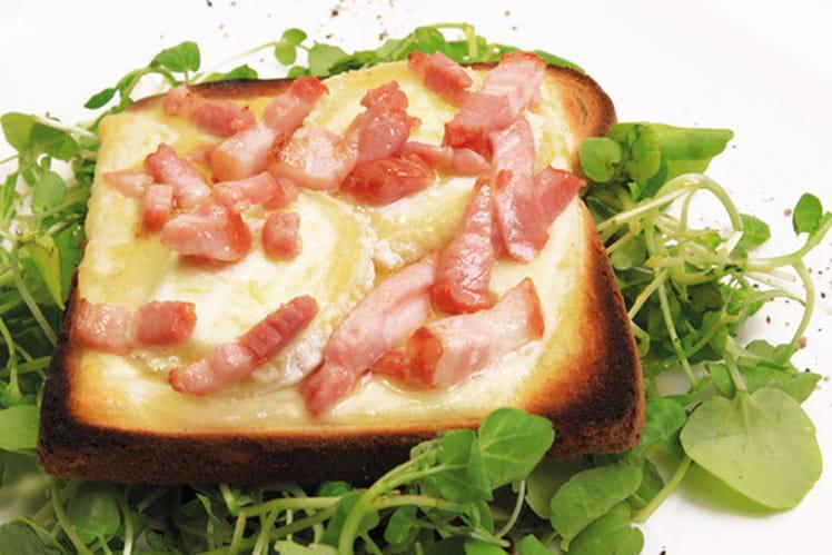 Fromage de chèvre sur toast