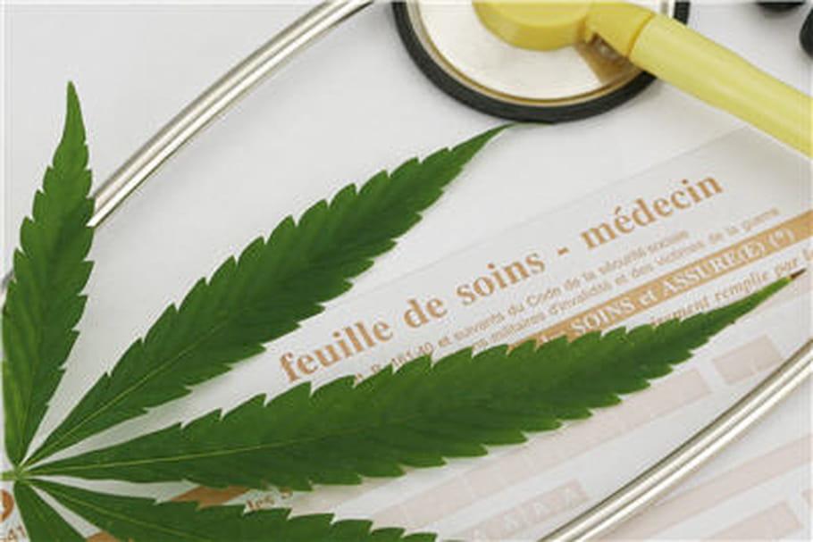 Vers une autorisation du cannabis thérapeutique