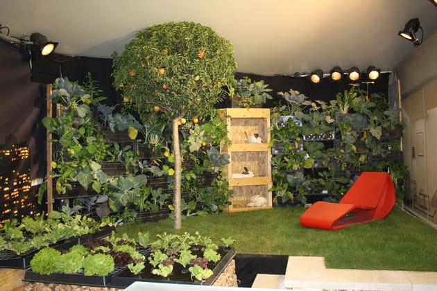 Jardin éco-bio esthétique