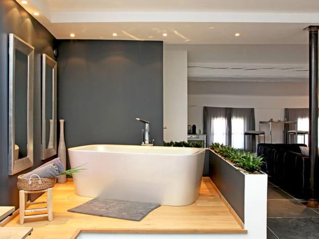 Une salle de bains ouverte sur le salon