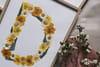 L'objet du désir: les lettres fleuries d'Herbarium