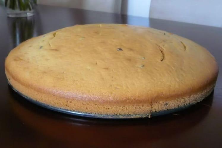 Gâteau moelleux au pandan, grué de cacao et lait de coco
