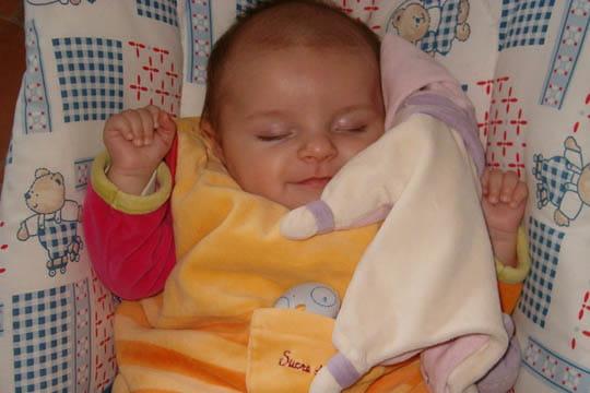Swann paisiblement endormie