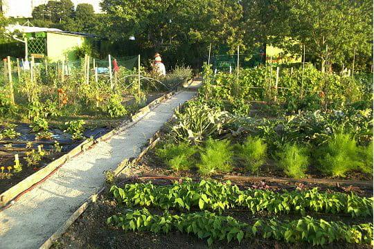 Un jardin ouvrier for Jardin ouvrier
